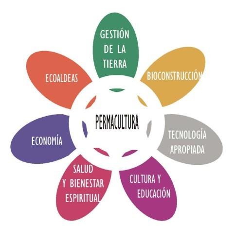 PETALOS-PERMACULTURA2