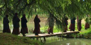 Gira «Tocando la Tierra» encuentro con la tradición zen de Thich Nhat Hanh